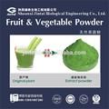 séchage par pulvérisation boire du jus de fruits ou de légumes en poudre
