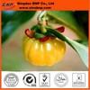 Sells natural garcinia cambogia fruit extract garcinia cambogia rind extract