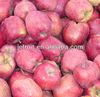 2014 fresh huaniu apple fruit supplier
