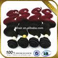 vendent bien partout dans le monde des cheveux produit de haute qualité et prix usine 5a vrigin cheveux indiens société