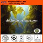 Sells High Quality Fucoidan Extract Brown Algae Extract kelp extract fucoidan