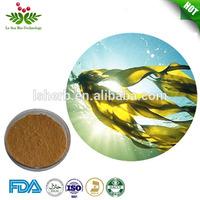 Hot sales Ecklonia Cava Extract Powder (Brown Algae)
