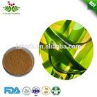 100% Natural Ecklonia Cava Extract Powder (Brown Algae)