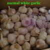 cheapest china new garlic price