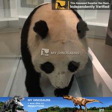 My-dino animal robot for company character - panda