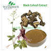 high quality black cohosh p.e/black cohosh root p.e/pure black cohosh extract