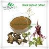 natural black cohosh extracts powder/black cohosh plant extract/black cohosh extracts