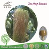 Top Quality Zea Mays Extract,Zea Mays Dried Extract Powder,Zea Mays Powder Extract 5:1 10:1