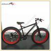 Cool 3 years warranty big tire electric fat bike/snow bike/chinese mountain bike