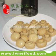 Canned mushroom in brine whole