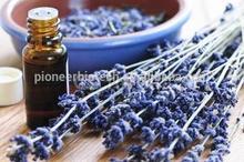 Factory wholesale natural lavender oil lavender essence oil lavender fragrance oil