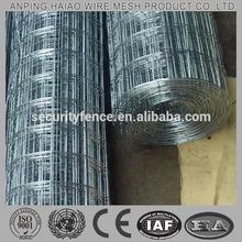 Best manufacturer hot sale welded mesh price 10x10