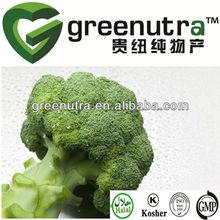 GMP Sulforaphane,broccoli extract powder