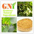 de haute qualité extrait de racine de kava kava