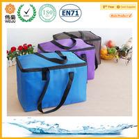 fitness cooler bag,fabric cooler bag,car cooler bag 12v
