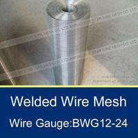 3/8 inch Galvanized Welded Wire Mesh 1m*30m