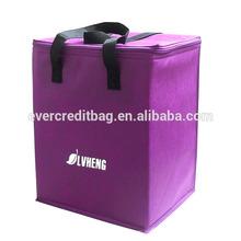 Simple Cheap Cooler Bag ,Aluminum Foil Cooler Bag