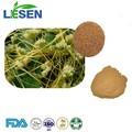 La norma iso/certifed haccp semillas de cuscuta chino p. E. Polvo/cuscustácea extraer semen 5:1 10:1 20:1