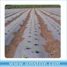 silver/black colored agricultural plastic sheet with holes
