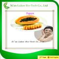Natural de la planta de la enzima papaína/extracto de papaya