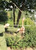 hunting wooden archery recurve bow and arrow