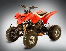 atv 250 cc 4 stroke