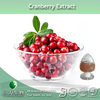 100% Pure Cranberry Fruit Powder Supplied By 3W Manufacturer