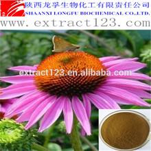 Manufacturer Supply Echinacea Purpurea Herb