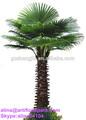 De interior y al aire libre decorativa artificial de árboles de palma/jardín decoración del árbol de palma