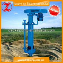 Stainless Steel Submersible Vertical Pump for Water