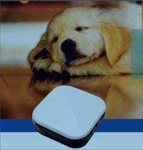 gps sim card tracker micro gps chip tracker gps pet tracker