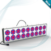 Apollo 18 full spectrum led grow lights,600w best led grow lighting 2014