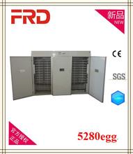 high quality automatic cheap quail incubator FRD-5280