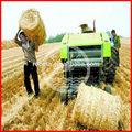 Meilleure performance de blé hay bale poids 0086-15039070307