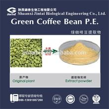 Natural 25% 50% Chlorogenic acid Coffee Bean Extract powder