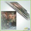 Reprodução resumo flores para pintura desenho telha cerâmica