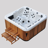 Eco Friendly safety swim pool JCS-62 with Gecko circulation pump