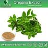 Food Grade Wild Oregano Oil (Origanum Minutiflorum),Origanum Vulgare Extract