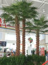 palm tree inflatable pool