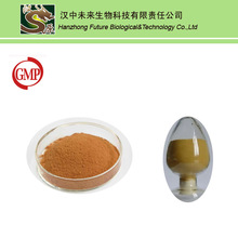 Natural and Pure Powder Beer Yeast Extract Powder