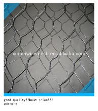 Anping factory Suppl Galvanized Hexagonal Wire Mesh