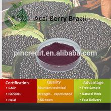 Acai Berry /Acai Berry Extract/Acai Berry Brazil
