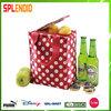 beach beer cooler bag,insulated cooler bag,beer bottle cooler bag