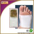 herb médecine efficace de pied de detox correctifs