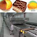de poupança de energia industrial forno de padaria