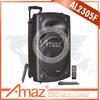 big sound powerful outdoor speaker system