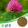 high quality formononetin /formononetin 485-72-3 / red clover extract biochanin a