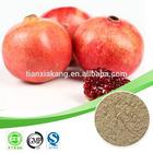 organic ellagic acid /ellagic acid 90% / punicalagin a + b ellagic acid