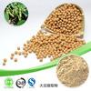 nattokinase supplement /natto extract / natto extract powder