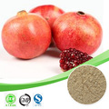 Granatapfel ellagsäure Säure/granatapfel-extrakt 40% ellagsäure Säure/ellagsäure 70% granatapfel schälen